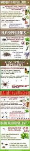 Flies In Backyard 25 Things Your Mom Should Have Told You Insect Repellent