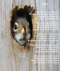 squirrel door u0026 country rustic squirrel door bell welcome dinner