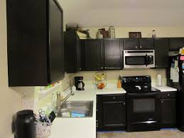 Black Cupboards Kitchen Ideas Kitchens Black Cabinets Fancy Home Design