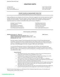 free professional resume template 2 2 free resume templates exles lucidpress free professional