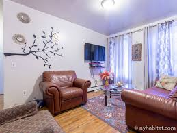 New York Share Apartment Design Ideas Wonderful And New York Share - Nyc apartment design ideas