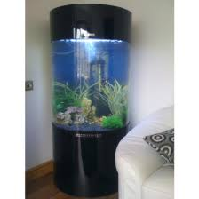 cylinder fish tanks for sale allpondsolutions