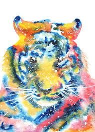 tiger spirit meaning medicine magic