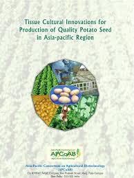potato tissue culture innovations for asia pacific potato