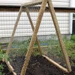 Simple Trellis Ideas 13 Ways To Make A Trellis Garden Inspiration Pinterest