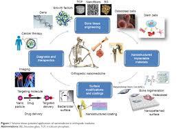 full text nanomedicine applications in orthopedic medicine state