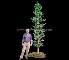 artificial spruce tree colorado spruce 10 commercial silk int l