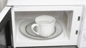 gerüche entfernen mikrowelle reinigen und gerüche entfernen