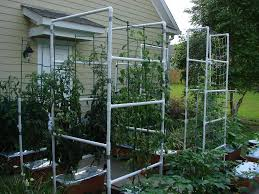 trellis plans developing cucumber trellis ideas for your own field