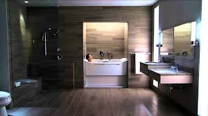 Designer Sinks Bathroom by Apartments Captivating Kohler Accessible Bathroom Solutions