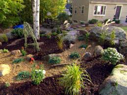 Image Of Rock Garden Rock Garden Design Basics Diy
