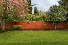 Ideas For Backyards 32 Brilliant Backyard Tree Ideas