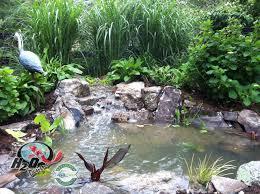 Small Backyard Pond Designs Best Above Ground Pond Designs It Is - Backyard pond designs small