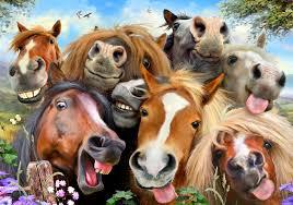 horses selfie wall mural horses selfie wallpaper wallsauce usa horses selfie wall mural photo wallpaper