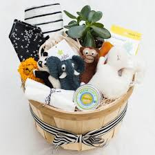 Baby Basket Gifts Welcome Baby Gift Basket U2013 Present Day