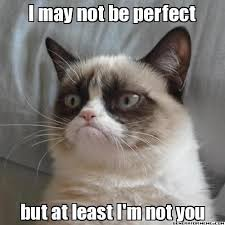 Meme Cheezburger - a collection of grumpy cats best memes i can has cheezburger