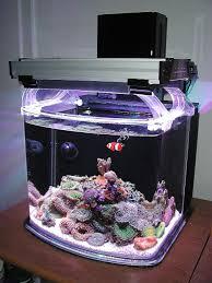 stunner led aquarium light strips nano sapiens 2013 featured nano reef aquariums nano reef com