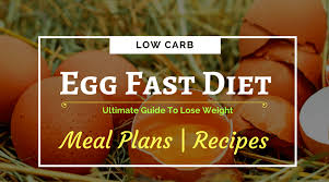 fast diet your weight loss guide meal plans and recipes included