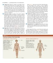 Human Anatomy And Physiology Textbook Online Principles Of Anatomy And Physiology 14th Edition Pdf Free By Tortora