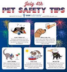 Arkansas Travel Safety Tips images July 4th pet safety tips northside veterinary hospital jpg