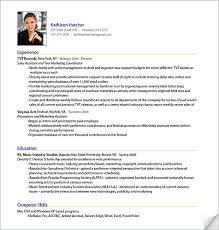 Professional Format Resume Resume Format For Professional Nardellidesign Com
