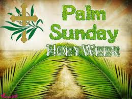 palm sunday palms for sale 28 best palm sunday images on palm sunday sunday