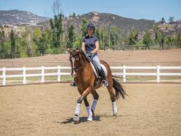 how to successfully ride inside leg to outside rein dressage today