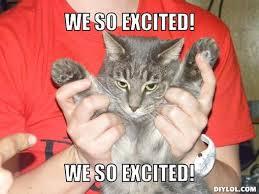 Cat Meme Maker - excited cat meme generator ma