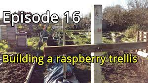 episode 16 building a raspberry trellis youtube