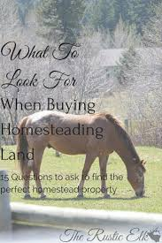 questions to ask when buying a house best 25 homestead land ideas on pinterest buy land homestead