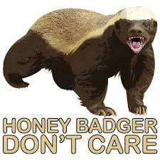 Meme Honey Badger - honey badger don t care honey badger know your meme