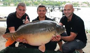 big fish the sbs sziko team in competition mode sbs baits