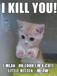 Mean Kitty Meme - cute little kitty kills lol memes