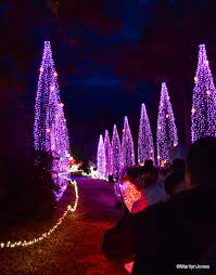christmas lights in college station texas santa s wonderland college station texas travelgumbo s north