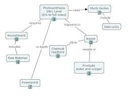 photosynthesis concept map pictures to pin on pinterest thepinsta