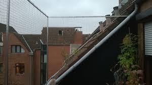 katzennetze balkon dachloggia balkon in köln ohne bohren mit katzennetz gesichert