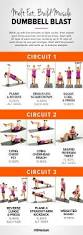 Full Body Dumbbell Workout No Bench Best 25 Circuit Workouts Ideas On Pinterest Full Body Circuit