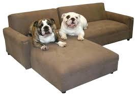 medium plastic dog beds u2013 govegan me