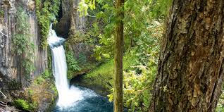 Coos Bay Oregon Craigslist by A Highway Of Waterfalls Travel Oregon