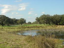 orange county national crooked cat or panther lake golf