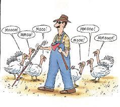 thanksgiving mr medina