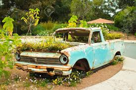 rusty pickup truck rusty pick up ute truck overgrown with flowers stock photo picture