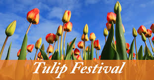 thanksgiving point coupon 2 weekday tulip festival coupons