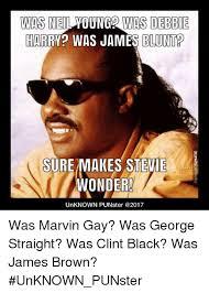 Stevie Meme - was neil young2 was debbie harry was james blunt sure makes