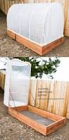 21 best greenhouse ideas images on pinterest gardening backyard
