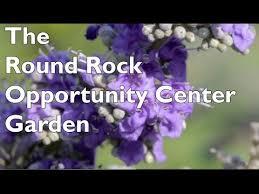 the round rock opportunity center garden round rock isd youtube