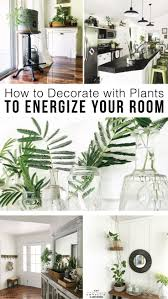 how to decorate with plants indoors to energize your room