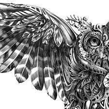 resultado de imagen para owl illustration tattoo tattoo