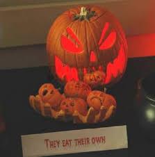 clever pumpkin bunnyblab halloween pumpkin fun