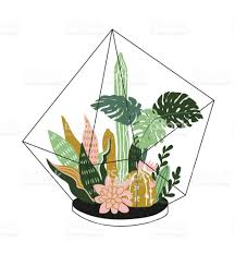 Tropical Home Decor Hand Drawn Contained Tropical House Plants Scandinavian Style